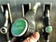 """""""La propuesta de prohibir los biocarburantes convencionales a partir de 2020 es burda e injusta"""""""