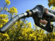 Aumenta el corte de biodiésel hasta el 8%, y se anuncia que será 9% en 2018 y 10% en 2019