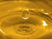 Enésimo annus horribilis para los biocarburantes