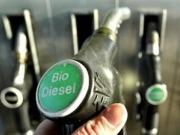 Solo el uno por ciento del biodiésel español se fabrica con materia prima propia