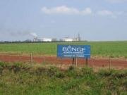 El etanol de Bunge, envuelto en casos de desplazamientos de indígenas