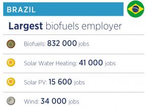 El bioetanol de caña de azúcar de Brasil genera el doble de empleos que el de maíz de Estados Unidos con menos producción