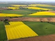 Propuestas para llegar al 7% de biocarburantes de cultivos en la UE