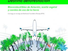 Ecologistas temen a los biocarburantes en la aviación, pero su uso va lentísimo