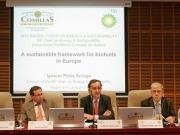 Un foro de BP pide flexibilizar los objetivos de biocarburantes