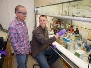 Producción de dos tipos de biocarburantes a partir de una misma alga