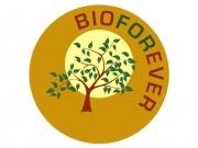 Nuevo proyecto de biorrefinería que ahonda en el uso final de los bioproductos