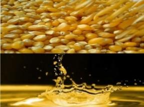 Covid-19: Los productores de etanol ante el cierre total o parcial de sus plantas