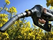 El Gobierno también recorta los objetivos de biocarburantes