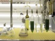 Las microalgas para biocarburantes llegan a la T4 de Barajas
