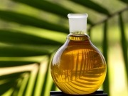 """""""No queremos más aceite de palma en nuestros depósitos"""""""