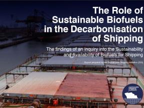 Estiman un treinta por ciento de biocarburantes en el transporte marítimo para 2050