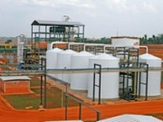 Se incrementa la inversión francesa en bioenergía