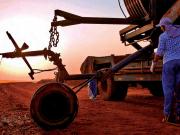 La ONU no quiere que los países en desarrollo pierdan el tren de los biocarburantes