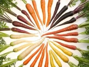 La zanahoria, buena para la vista... ¡y para producir biocombustible!