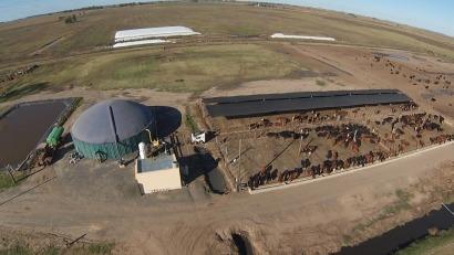 El INTI propone que los biodigestores que sólo tratan efluentes produzcan biogás