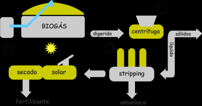 Biogás como generador de fertilizantes eficientes y ecológicos