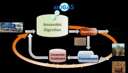 Proyecto para optimizar la producción de biogás con la paja del estiércol