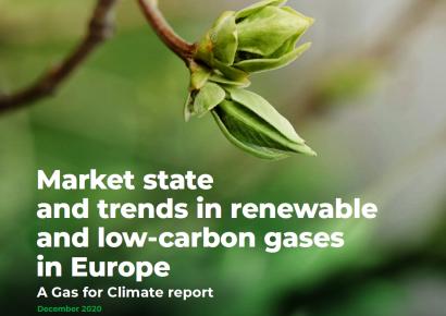 Aumento rápido de la producción y distribución de biometano y fase piloto para el hidrógeno verde