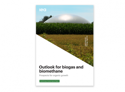 Agencia Internacional de la Energía: biogás y biometano podrían cubrir el 20% de la demanda mundial de gas