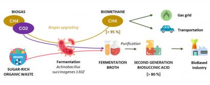 Módulos para plantas de biogás que producen biometano y compuestos para pinturas y adhesivos
