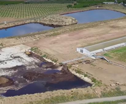 El biogás espera (desespera), mientras el purín contamina