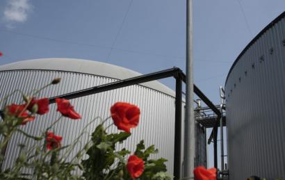 Regatrace aboga por requisitos menos complejos para armonizar el mercado transfronterizo de biometano