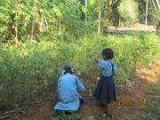 Huertos y biogás en escuelas hindúes para autoconsumo de alimentos y energía