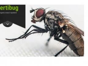 El biogás sirve para fabricar insecticidas naturales contra la mosca de la col