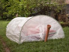Instalan cincuenta miniplantas domésticas de biogás en Kenia alimentadas con una planta invasora