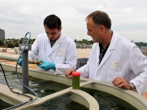 Biogás y biomasa para hacer más eficientes a las pymes alimentarias