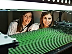 Hacia la mayor rentabilidad de un biogás más polifacético y barato