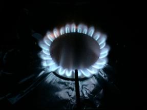 El potencial del biogás permitiría ahorrar 2.300 millones de dólares