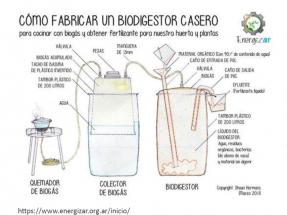 Miogas: cómo hacer que el biogás sea mío o tuyo