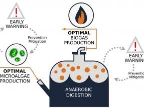 Cómo contribuir a incrementar en un 50% la eficiencia de la producción de biogás con microalgas