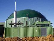 Biogás: ¿y si la solución no son las primas?