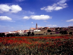 El biogás y la fotovoltaica se unen para sustentar diecisiete comunidades energéticas en Córdoba