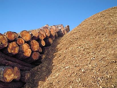 España ya puede atender toda su demanda de energía con biomasa
