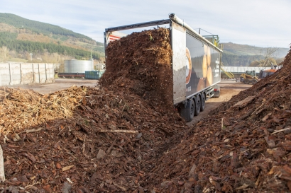 Glefaran para con el objetivo de incrementar la producción de electricidad y reducir el consumo de biomasa