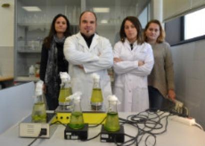 La Universidad de Vigo investiga la producción de pélets con microalgas