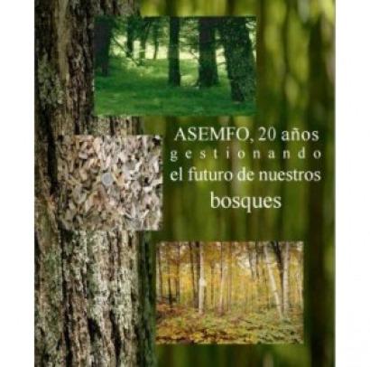 Asemfo confirma el creciente peso de la energía en la industria forestal