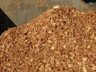 Ence potencia el uso de la madera de eucalipto para biomasa