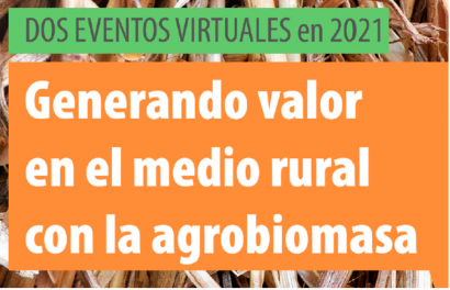 Agrobioheat acerca experiencias en el uso de agrobiomasa, desde España a la India