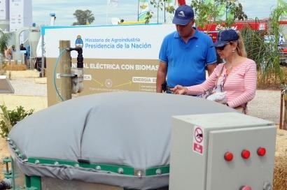 ARGENTINA: Crean un programa para promocionar la energía a partir de la biomasa