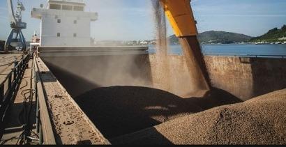 Veinte nuevas empresas obtienen la certificación de sostenibilidad del pélet industrial
