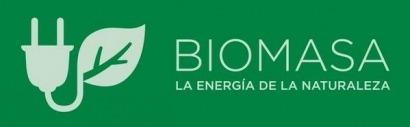 Bioplat insta a aprovechar las oportunidades tecnológicas de la bioenergía