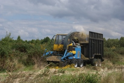 Pélet de matorral gallego para luchar contra los incendios forestales