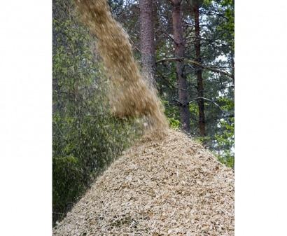 Los 24 mandamientos de la sostenibilidad de la bioenergía