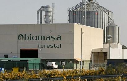 Biomasa Forestal: desde Galicia con calor