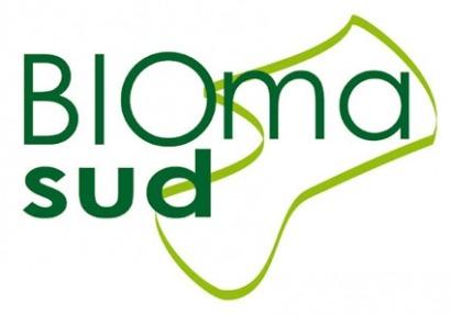 ¿Buscas Biomasa? Ahora es más fácil con Biomasud